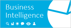 Business Intelligence i Excel